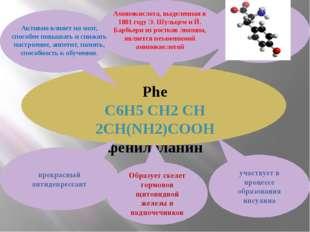 Phe С6H5 CH2 CH 2CH(NH2)COOH фенилаланин участвует в процессе образования ин