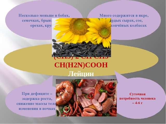 Leu (CH3) 2 CH CH3 CH(H2N)COOH Лейцин Много содержится в икре, твёрдых сырах,...