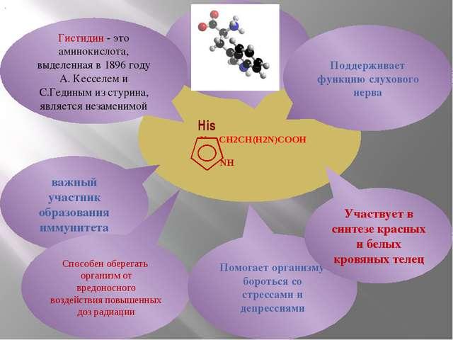 His N CH2CH(H2N)COOH NH важный участник образования иммунитета Гистидин - эт...