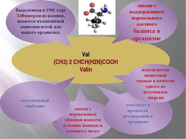 Val (CH3) 2 CHCH(H2N)COOH Valin связан с поддержанием нормального азотного б...