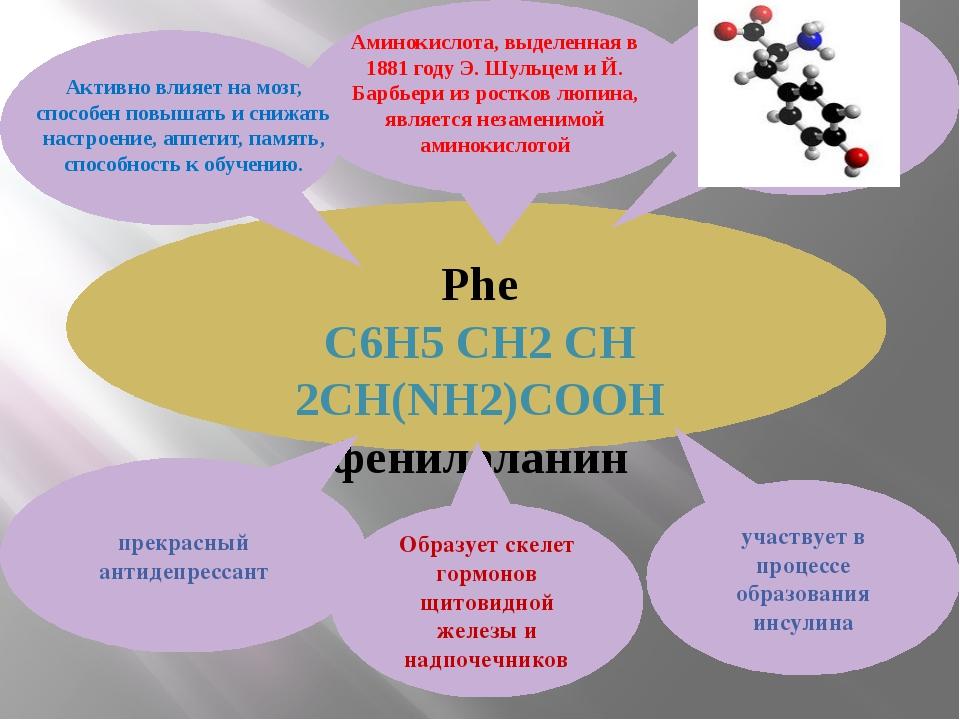 Phe С6H5 CH2 CH 2CH(NH2)COOH фенилаланин участвует в процессе образования ин...