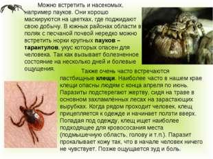 Можно встретить и насекомых, например пауков. Они хорошо маскируются на цве