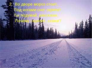 2. Во дворе мороз стоит, Под ногами снег скрипит. Ты подумай, расскажи, Поче