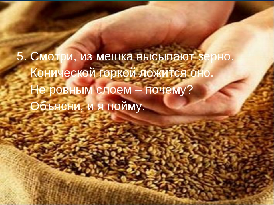 5. Смотри, из мешка высыпают зерно. Конической горкой ложится оно. Не ровным...