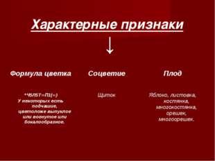 ↓ Характерные признаки Формула цветка Соцветие Плод *Ч5Л5Т∞П1(∞) У некоторы