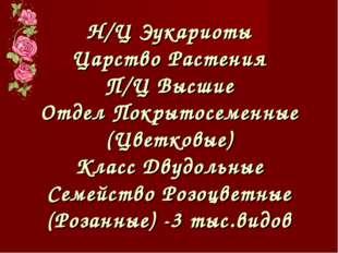 Н/Ц Эукариоты Царство Растения П/Ц Высшие Отдел Покрытосеменные (Цветковые) К