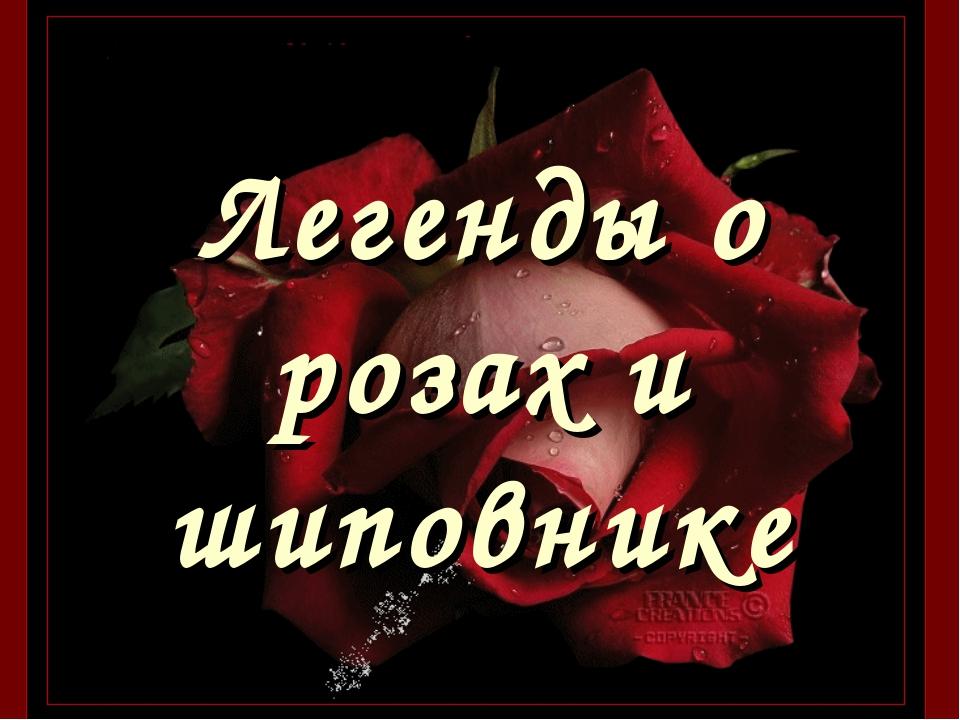 Легенды о розах и шиповнике