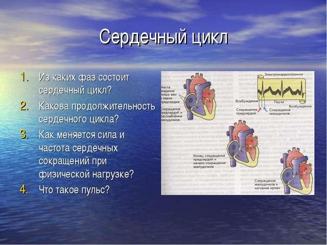 Сердечный цикл Из каких фаз состоит сердечный цикл? Какова продолжительность...