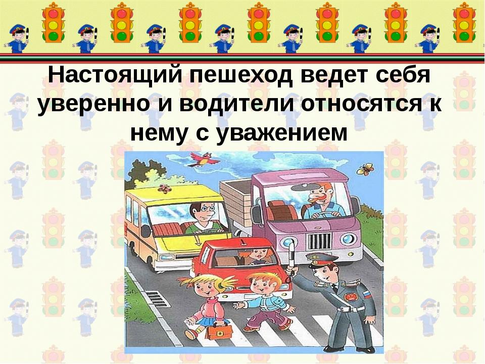 Настоящий пешеход ведет себя уверенно и водители относятся к нему с уважением