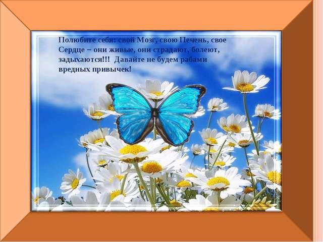 Полюбите себя: свой Мозг, свою Печень, свое Сердце – они живые, они страдают...