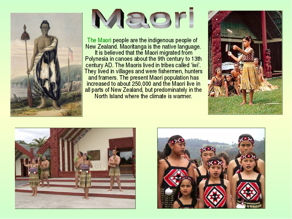 The Maori people are the indigenous people of New Zealand. Maoritanga is the...