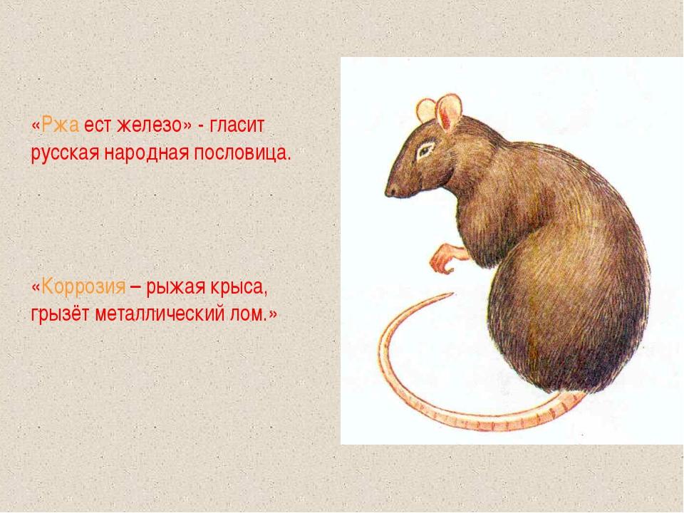 «Ржа ест железо» - гласит русская народная пословица. «Коррозия – рыжая крыса...