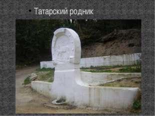 Татарский родник