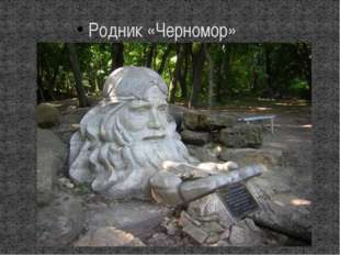 Родник «Черномор»