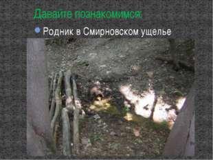 Давайте познакомимся: Родник в Смирновском ущелье