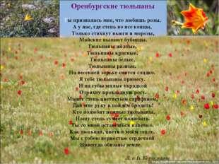 Оренбургские тюльпаны Ты призналась мне, что любишь розы, А у нас, где степь