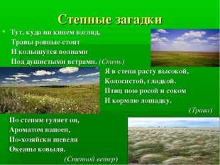 Степные загадки Тут, куда ни кинем взгляд, Травы ровные стоят И колышутся вол