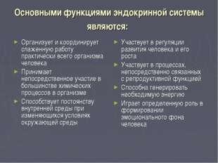 Основными функциями эндокринной системы являются: Организует и координирует с