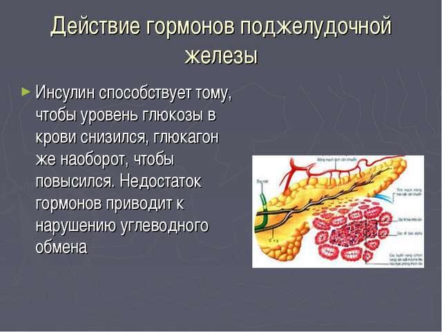 Действие гормонов поджелудочной железы Инсулин способствует тому, чтобы урове...
