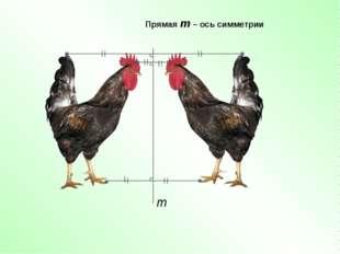 Прямая m – ось симметрии m
