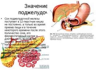 Значение печени и поджелудочной железы Сок поджелудочной железы поступает в 1