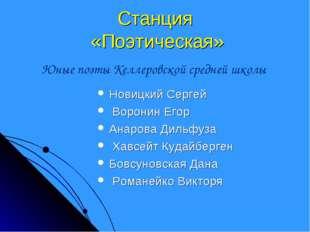 Станция «Поэтическая» Новицкий Сергей Воронин Егор Анарова Дильфуза Хавсейт К