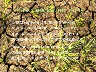 Классификация почв Классификация почв должна основываться не только на их при