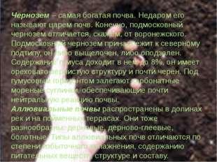 Чернозем – самая богатая почва. Недаром его называют царем почв. Конечно, под