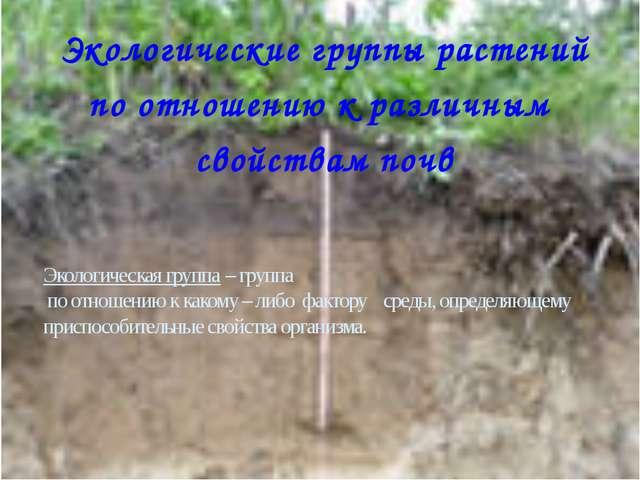 Экологические группы растений по отношению к различным свойствам почв Экологи...