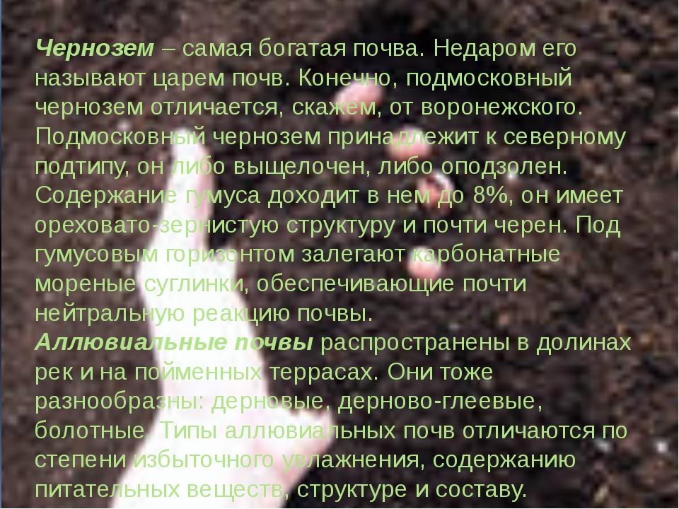 Чернозем – самая богатая почва. Недаром его называют царем почв. Конечно, под...