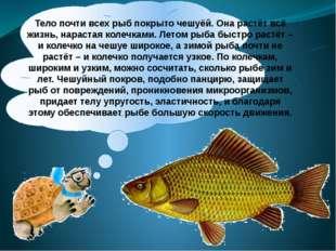 Тело почти всех рыб покрыто чешуёй. Она растёт всё жизнь, нарастая колечками