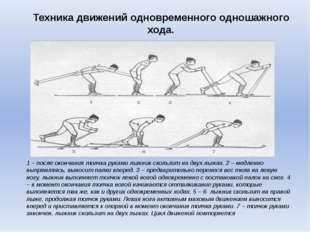 Техника движений одновременного одношажного хода. 1 – после окончания толчка