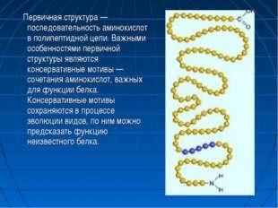 Первичная структура — последовательность аминокислот в полипептидной цепи. В