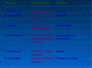 ФункцияОпределениеПример 1. СтроительнаяМатериал клеткиКаллоген 2. Трансп