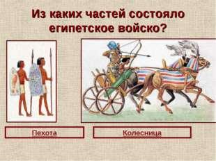 Из каких частей состояло египетское войско? Пехота Колесница
