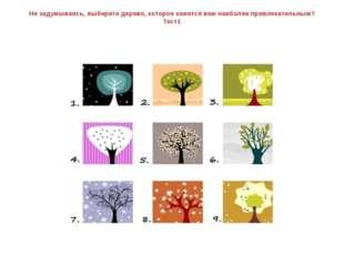 Не задумываясь, выберете дерево, которое кажется вам наиболее привлекательным