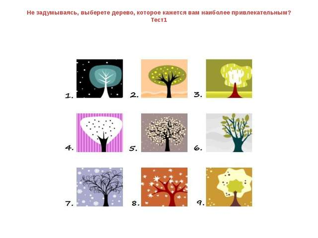 Не задумываясь, выберете дерево, которое кажется вам наиболее привлекательным...
