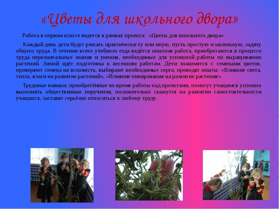 «Цветы для школьного двора» Работа в первом классе ведется в рамках проекта...