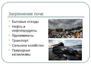 Загрязнение почв: Бытовые отходы Нефть и нефтепродукты Ядохимикаты Транспорт