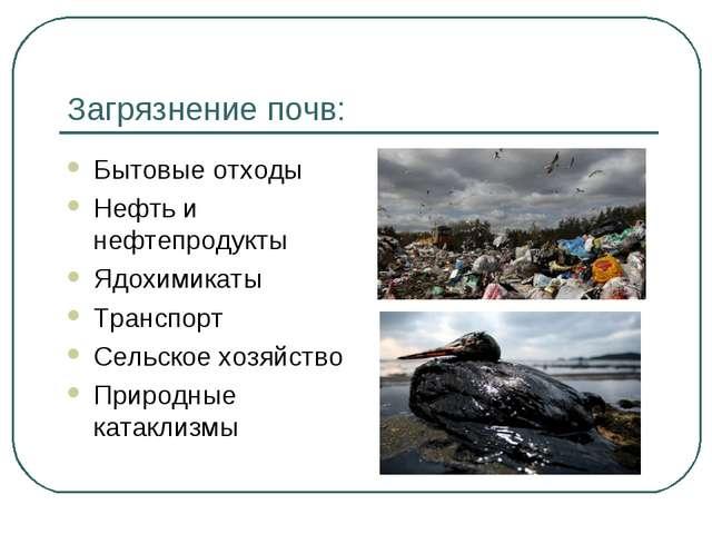 Загрязнение почв: Бытовые отходы Нефть и нефтепродукты Ядохимикаты Транспорт...