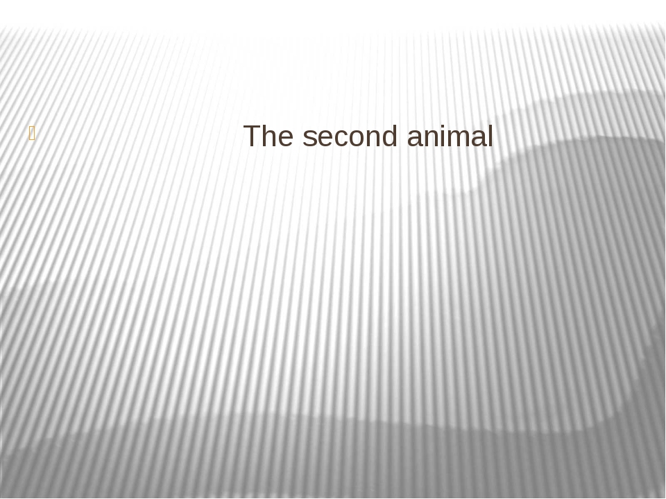 The second animal