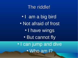 The riddle! I am a big bird Not afraid of frost I have wings But cannot fly I