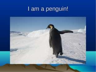 I am a penguin!
