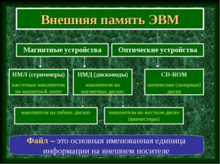 Внешняя память ЭВМ Магнитные устройства Файл – это основная именованная едини