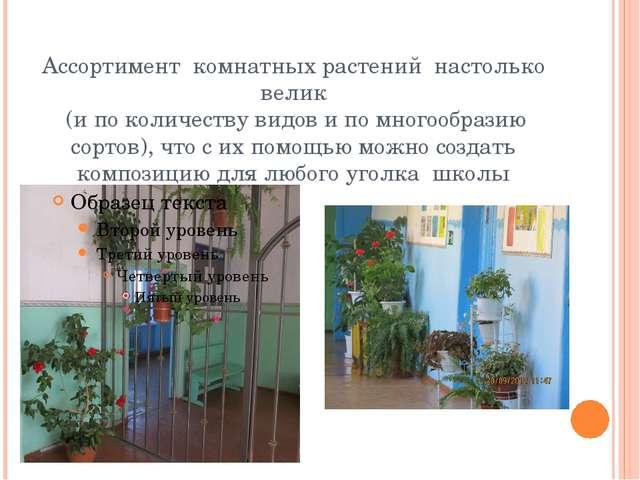 Ассортимент комнатных растений настолько велик (и по количеству видов и по мн...
