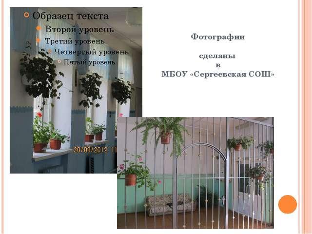 Фотографии сделаны в МБОУ «Сергеевская СОШ»