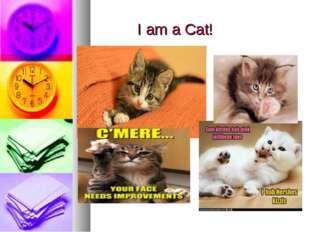 I am a Cat!