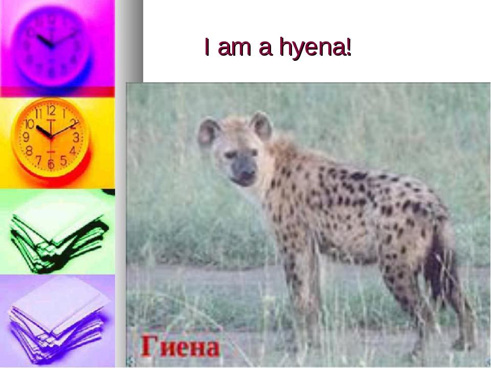 I am a hyena!