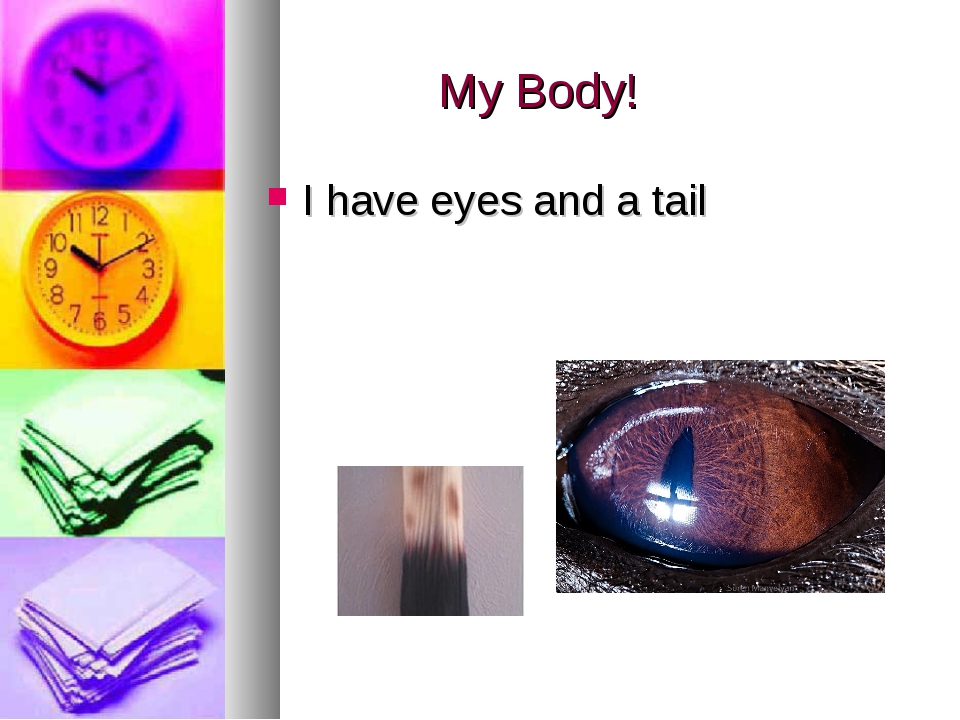 My Body! I have eyes and a tail