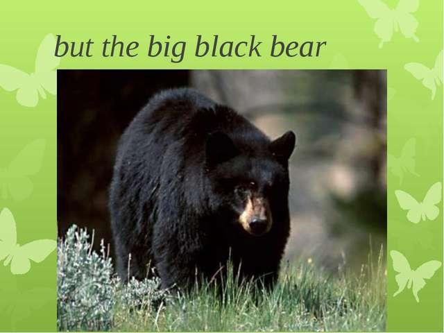 but the big black bear